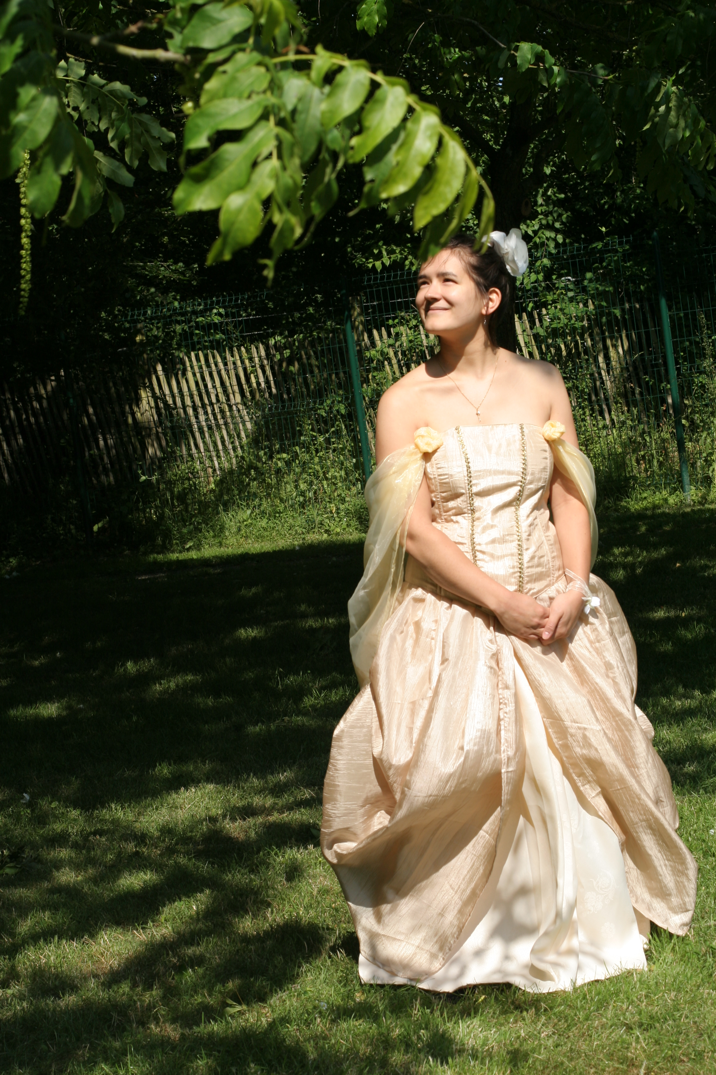 RachelArbre